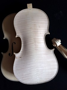 viola 4